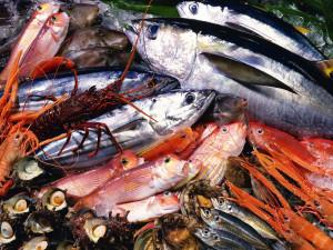 sea-foods
